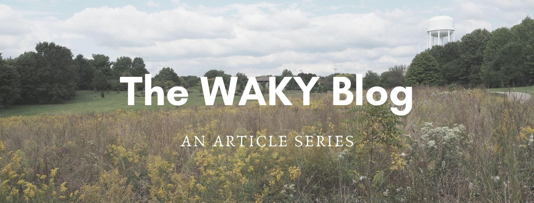 The WAKY Blog